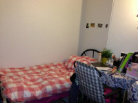 Nice twin share room in a new painted house in the city(female)