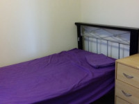 NeutralBay Single Room Female