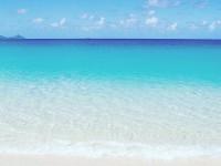 ハミルトン島に旅行したい方必見!!!!