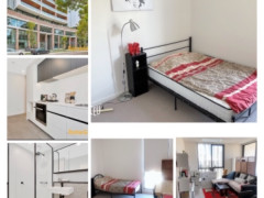 Ultimo)RENT for single Room