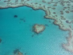幻のH島ハートリーフの島です
