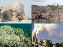 環境保護に興味はありますか!?