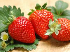 We want you! Strawberry farm