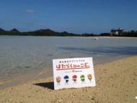 【英語・接客】沖縄高時給だけどとても働きやすい!in西表島