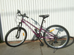 Newest Bike 新品未使用、トイザらス子供用自転車