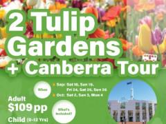 2 Tulip Gardens Canberra tours