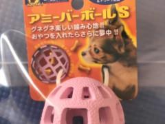 超小.小型犬用トリーツおもちゃ