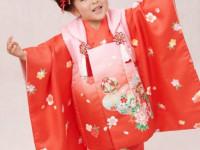 スタジオ&出張写真撮影◆七五三/赤ちゃん/家族写真/着物写真