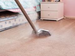Carpet cleaning apartment
