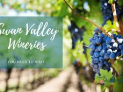 Swan Valley Day Tour