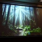 和歌山県が食と世界遺産のセミナーを開催
