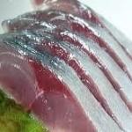 寿司スタジオ 激うま!シメサバ