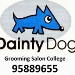 Dainty Dog grooming college 入学生募集です