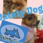 犬体名称とはなにか?Dainty Dog grooming college