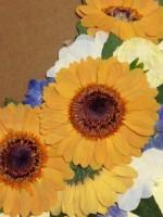 お花のアレンジメントの一つにこんな方法もあります!