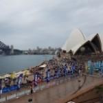速報!Sydney Running Festivalに参加してきました!前ちゃんの結果は如何に?! ~人生はマラソンだ!ランニングブログ 十二歩目~