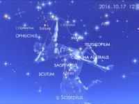 蠍座の新月の星読み〜独りぼっちのあなたへ