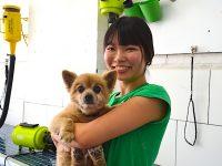 プードル部門最優秀賞のドッグトリマー/高山結可(ゆいか)さん(26歳)