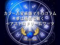 宇宙における南半球の役割/新プロジェクト始動【ガイアハウスコラム第16回】