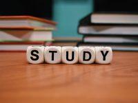 集中したいときにおすすめな留学生向けシドニー勉強スポット