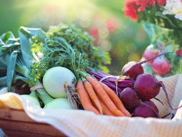ベジタリアンの『メリット&デメリット』を栄養学視点から紹介