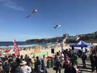 【シドニー観光】ボンダイマーケットと凧揚げ祭りに行ってきました!