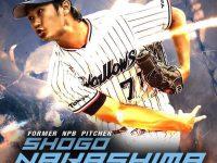 11月のシドニーイベント/プロ野球観戦&日本フェスを楽しもう