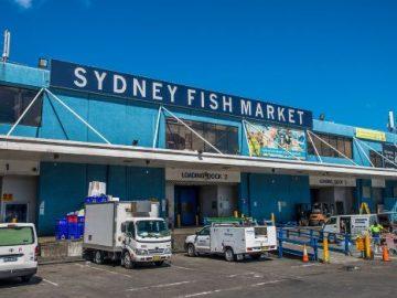 行ったことある?♥シドニーのフィッシュマーケット!♥