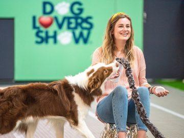 8月のシドニーイベント/愛犬家のための超大型イベント!