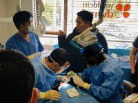 ●当院歯科の押しは、講師レベルのインプラントと歯列矯正!