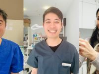 ◉10月歯の健康とホワイトニング、小顔ボトックスのキャンペーン!