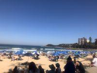 オーストラリアの夏の過ごし方!?BeachでBBQ!