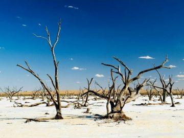 乾燥大陸・オーストラリアを取り巻く状況について