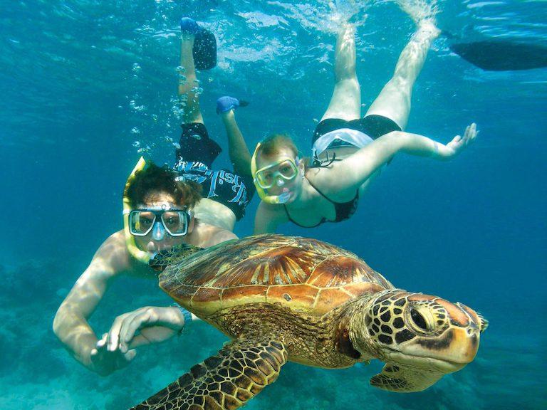 まだ間に合う国内旅行!ケアンズ&世界遺産グリーン島で海を満喫