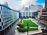 大手企業から直に学ぶ!シドニー工科大学UTSのビジネス学部